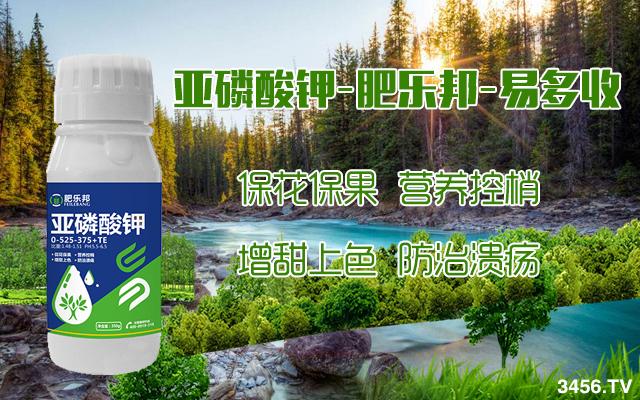 亞磷酸鉀真的能治好病害嗎?亞磷酸鉀的作用,你真的了解了么?